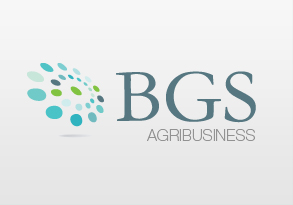 Proyecto Agribusiness BGS